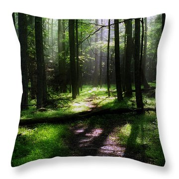 Morning In Cades Cove Throw Pillow by Greg and Chrystal Mimbs