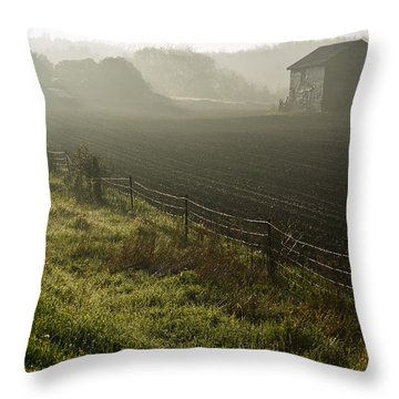 Morning Mist Over Field And Throw Pillow by Jim Craigmyle