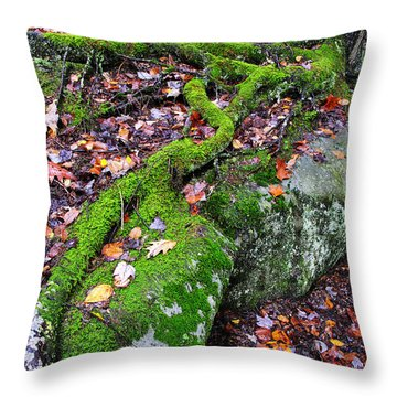 Moss Roots Rock And Fallen Leaves Throw Pillow by Thomas R Fletcher