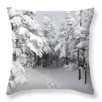 Mount Osceola Trail - White Mountains New Hampshire Throw Pillow by Erin Paul Donovan