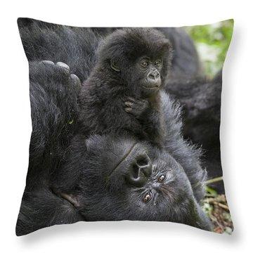 Mountain Gorilla Baby Playing Throw Pillow by Suzi  Eszterhas
