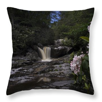 Mountain Laurel And Falls On Small Stream Throw Pillow by Dan Friend
