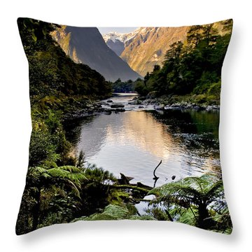Mountain Valley Throw Pillow by Tim Hester