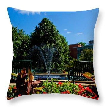 Msu Water Fountain Throw Pillow by John McGraw