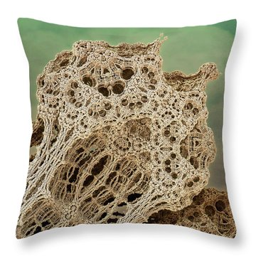 Mud Hive Throw Pillow by Kevin Trow
