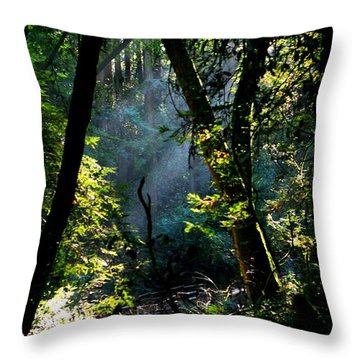 Muir Woods Throw Pillow by Aidan Moran