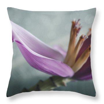 Musa Ornata - Pink Ornamental Banana Flower - Kepaniwai Maui Hawaii  Throw Pillow by Sharon Mau