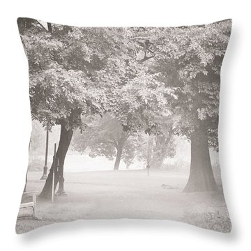 Museum Park Fog Throw Pillow by Trish Tritz