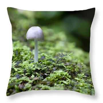 Mushroom Throw Pillow by Steven Ralser