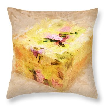 My Box Of Secrets Throw Pillow by Andee Design