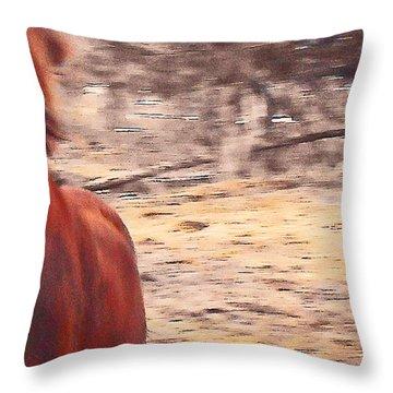 My Fine Friend The Flashy Chestnut Stallion Throw Pillow by Patricia Keller