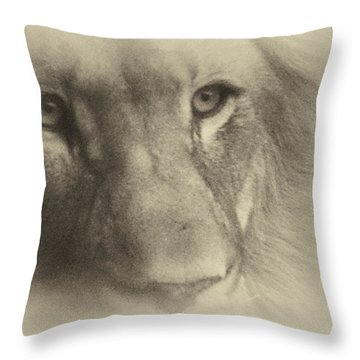 My Lion Eyes In Antique Throw Pillow by Thomas Woolworth