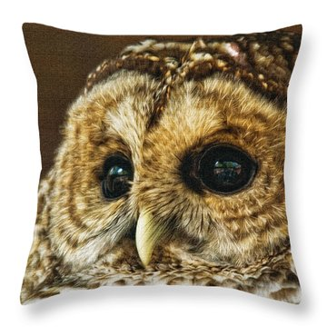 My What Big Eyes You Have Throw Pillow by Lois Bryan