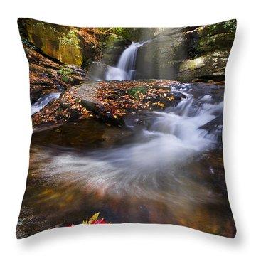 Mystical Pool Throw Pillow by Debra and Dave Vanderlaan