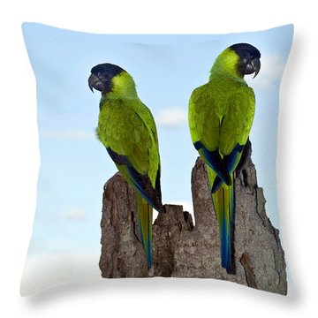 Nanday Conures Throw Pillow by Anita Studer
