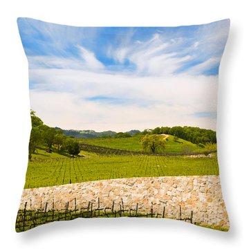 Napa Vineyard #2 Throw Pillow by Mick Burkey