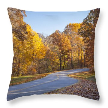 Natchez Trace Throw Pillow by Brian Jannsen