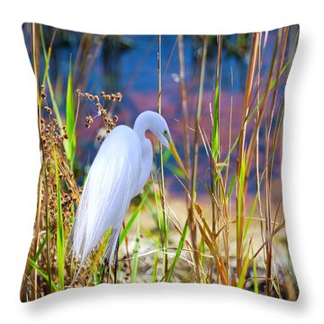 Natural Beauty Throw Pillow by Adele Moscaritolo
