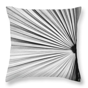 Natural Expolsion Throw Pillow by Sabrina L Ryan