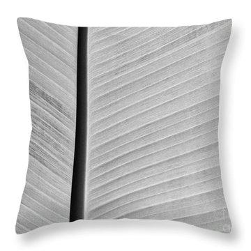 Natural Lines Throw Pillow by Sabrina L Ryan
