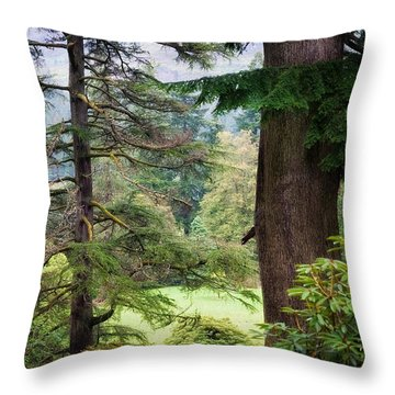 Natural Magnetism. Scotland Throw Pillow by Jenny Rainbow