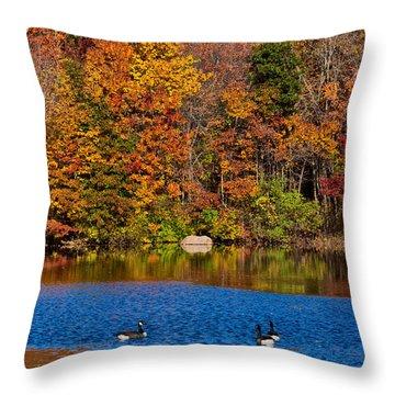 Natures Colorful Autumn Throw Pillow by Karol Livote