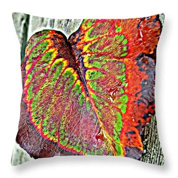 Nature's Glory Throw Pillow by Barbara McDevitt