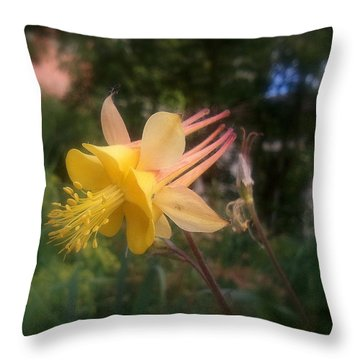 Natures Star Throw Pillow by Heather L Wright