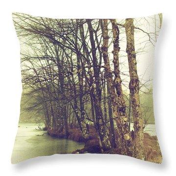 Natures Winter Slumber Throw Pillow by Karol Livote