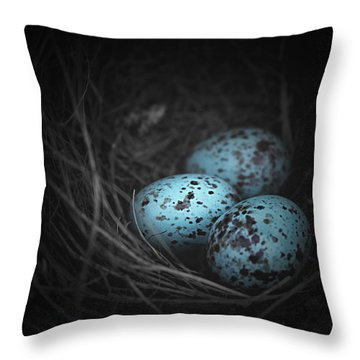 Nest Of 3  Throw Pillow by Trish Mistric
