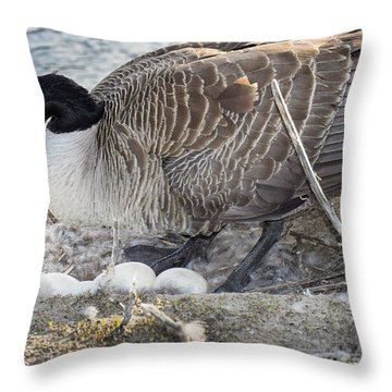Nester Throw Pillow by Bill Pevlor