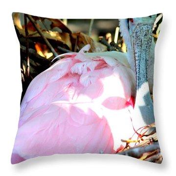 Nesting Spoonbill Throw Pillow by Carol Groenen