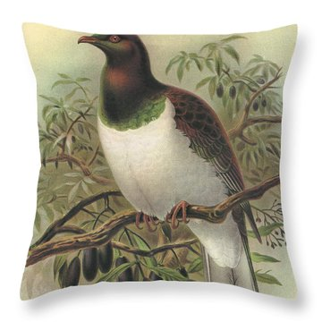 New Zealand Pigeon Throw Pillow by J G Keulemans