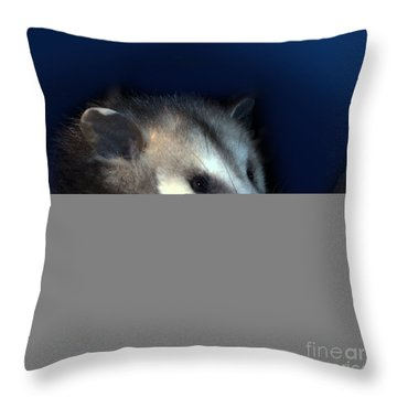 Night Creature Throw Pillow by Betty LaRue