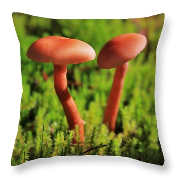 North Cascades Mushrooms Throw Pillow by Benjamin Yeager