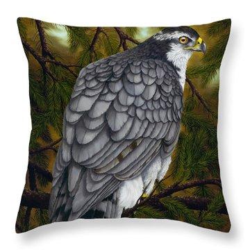 Northern Goshawk Throw Pillow by Rick Bainbridge