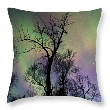 Northern Lights Cottonwood Throw Pillow by Ron Day