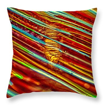 Northern Lights Throw Pillow by Omaste Witkowski