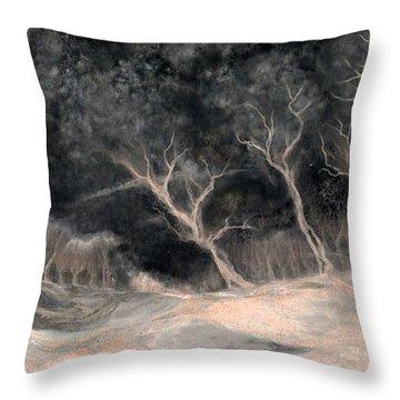 O2 Throw Pillow by Hans Neuhart