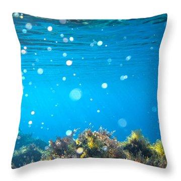 Ocean Garden Throw Pillow by Stelios Kleanthous