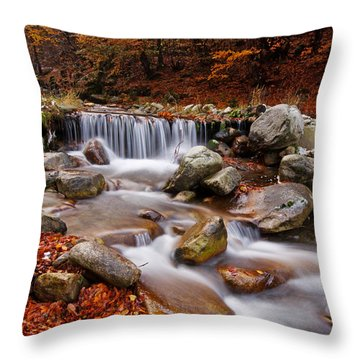 October Stream Throw Pillow by Mircea Costina Photography