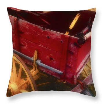 Old Buck Throw Pillow by Stephen Anderson