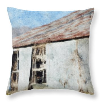 Old Metel Shed Painted Effect Throw Pillow by Debbie Portwood