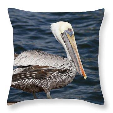 On The Edge - Brown Pelican Throw Pillow by Kim Hojnacki