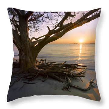 On The Edge Of The Surf Throw Pillow by Debra and Dave Vanderlaan