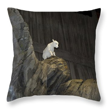 On Top Of The World Throw Pillow by Tara Lynn