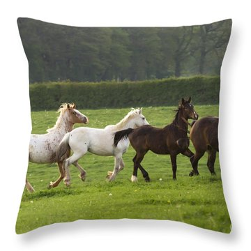 One After One Throw Pillow by Angel  Tarantella