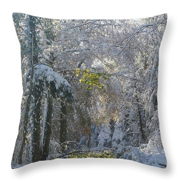 Onset Of Winter 1 Throw Pillow by Rudi Prott