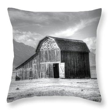 Open Door Throw Pillow by Kathleen Struckle