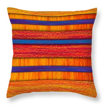 Orange And Blueberry Bars Throw Pillow by David K Small